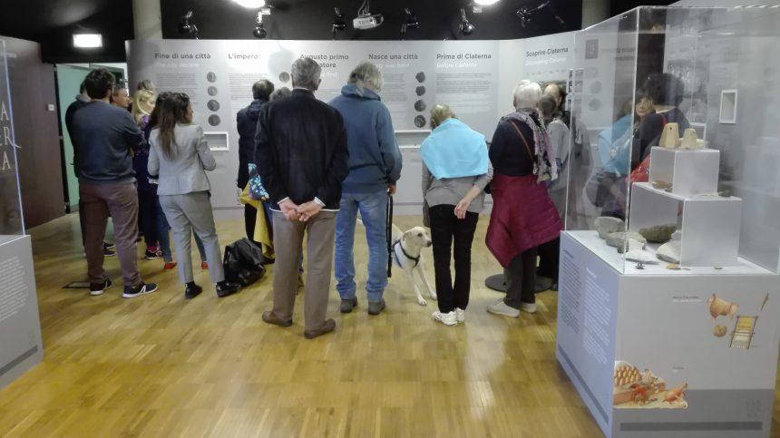 Le domeniche al Museo: aperture straordinarie